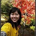 和高桐院內最紅的楓葉來張合照