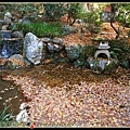 快被楓葉落葉蓋住的小池子