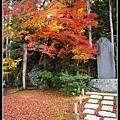 何有莊的楓葉也很漂亮喔!!