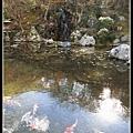 日式庭園景致