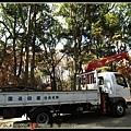 修剪樹枝的卡車