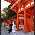 發現兩對新人在下鴨神社舉行婚禮