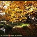 2008.京都.秋楓...結束囉!!