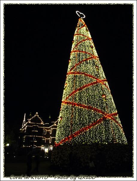 在網站就是被這顆聖誕樹吸引