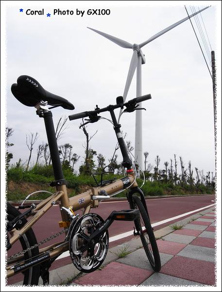 今天腳踏車的背景選擇真多
