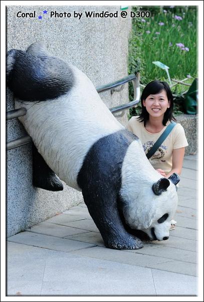 和假熊貓拍拍照也好