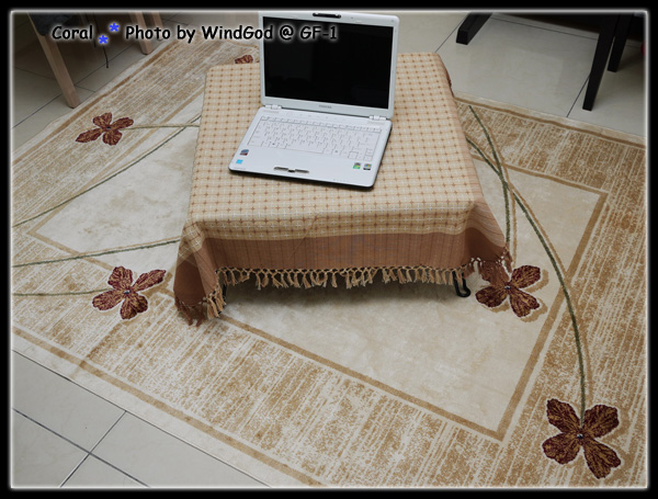 新地毯!!