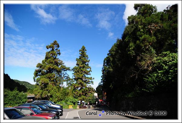 藍天白雲...出遊的好天氣