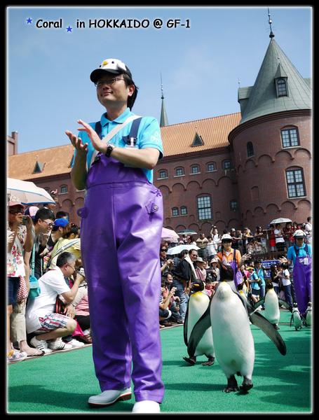 來了來了~~~搖頭晃腦的企鵝來囉!!