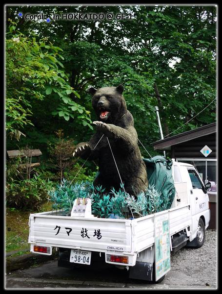 熊牧場~~~珊瑚想去啦!!