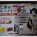 有機會到和歌山,不要忘記來拜訪tama喔!!