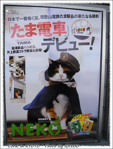 回到JR和歌山站要轉貴志川線囉!!