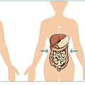 Intra-abdominal-pressure.png