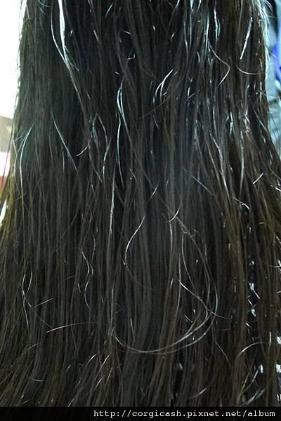 【體驗徵文】Within organic唯園有機:風靡日本來自紐約的有機髮品