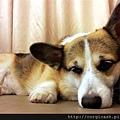 C360_2013-12-20-22-31-03-324.jpg