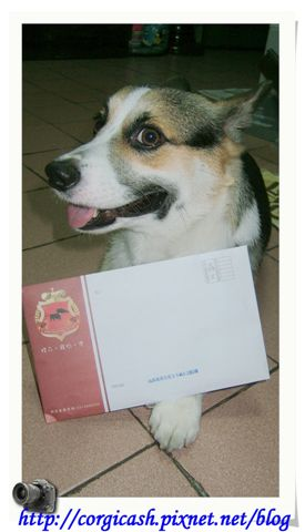 block-dog給我的情書嗎~