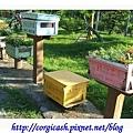 古坑蜜蜂故事館