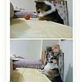 玩球玩到麻麻床上被捉包