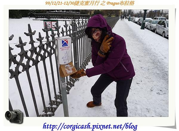 布拉格街景~政府提供紙袋收便便