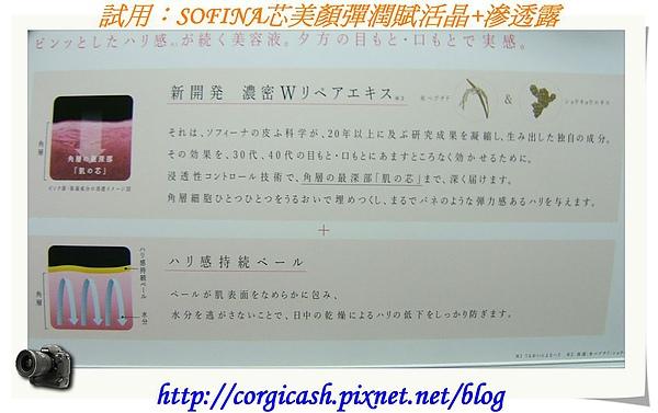 SOFINA-芯美顏彈潤賦活晶+滲透露
