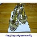 水水友情贊助的金色涼鞋