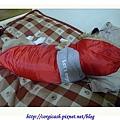 睡夢中的小紅帽