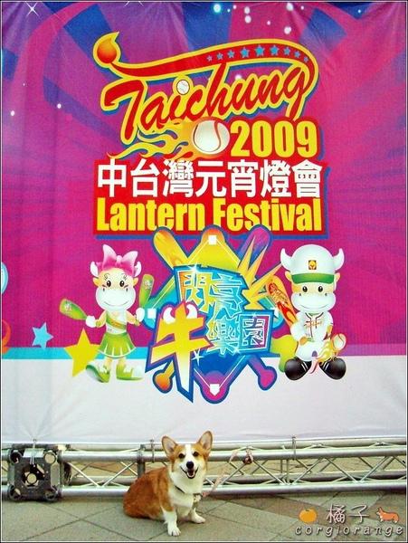 2009中台灣元宵燈會.jpg