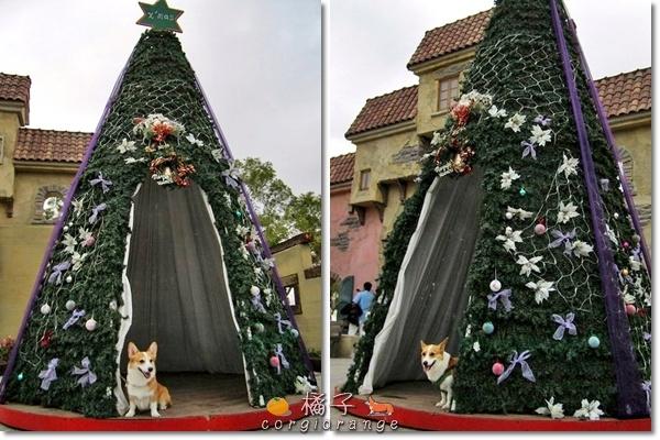 心之芳庭裡的簍空聖誕樹.jpg