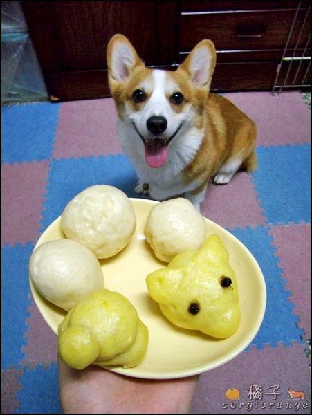 橘阿爸阿母做的饅頭.jpg