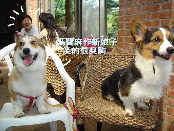 搜拉跟壽星大熊合照-3.jpg