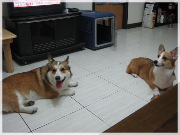 搜拉跟又嘻03.jpg