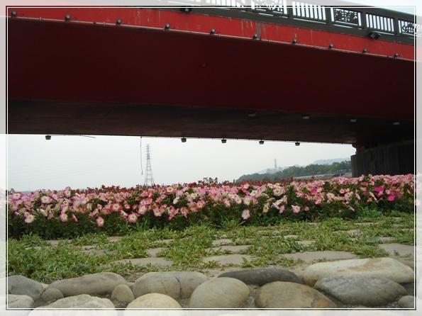 3.9 後龍溪畔-DSC08232.JPG