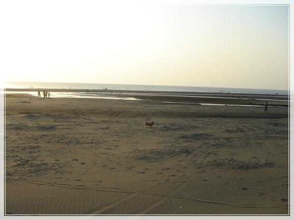 永安漁港-DSC09048.JPG