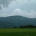 花東縱谷上的稻田風情