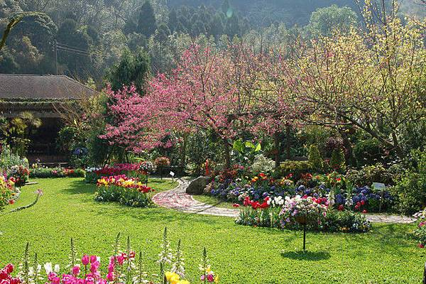 一進入花園,美景立即呈現在眼前