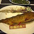 (3Y1M)待宰的魚