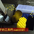 (3Y2M)公子的洗車工具們01