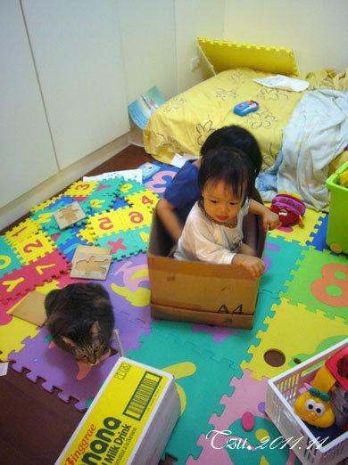 (3Y4M&1Y4M)兄妹情深之搞亂和室後乘坐紙箱離去?!