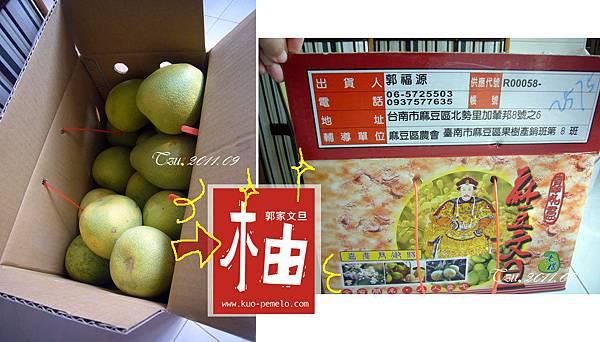 (3Y3M)吃柚子-郭家文旦