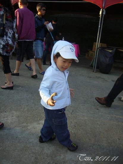 (3Y5M&1Y5M)銅鑼賞杭菊-寶寶找到一根小樹枝