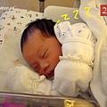 寶寶17d-呼呼大睡