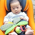 (4m)寶寶與汽座-2