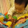 (6m)寶寶自己有樣學樣找小雞咯咯咯