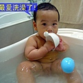 (7M)寶寶愛洗澡1