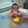(7m)寶寶新歡-洗澡鴨鴨