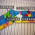 (8m)書小海龜-2