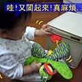(8M)寶寶與遊戲箱1-2