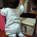(8m)寶寶對什麼都好奇
