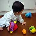 (9m)寶寶開心玩新玩具-2