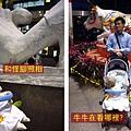 (9m)台北溜達-寶寶逛街